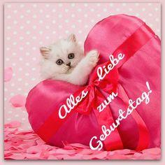 Kätzchen mit einem großen Herzen: Alles Liebe Zum Geburtstag! #alles_gute_zum_geburtstag #geburtstag #geburtstags #grussegrusskarten
