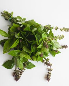 """This herb isn't often grown to give as a bouquet (it's more of a pizza topping than a floral centerpiece), and maybe that's a good thing — according to the Victorians, who didn't care for the strong flavor, it means """"hate.""""   - HouseBeautiful.com"""