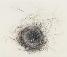drawings of nests