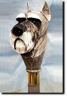 Schnauzer Natural Dog Walking Stick Our unique selection of handpainted Dog Breed Walking Sticks is sure to please the most discriminating Dog Lover! Be the envy of everyone with this unique canine wa Walking Sticks And Canes, Wooden Walking Sticks, Walking Canes, Hiking Staff, Standard Schnauzer, Whittling, Pomellato, Dog Walking, Beautiful Dogs