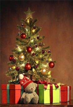 Christmas Photography Backdrop Christmas Tree and Bear Gift Background Christmas Tree Pictures, Christmas Tree Themes, Holiday Decor, Christmas Christmas, Christmas Border, Christmas Clothes, Christmas Presents, Vintage Christmas, Christmas Phone Wallpaper