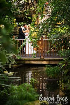 Milwaukee Mitchell Park Domes Wedding Weddings Pinterest Venues And