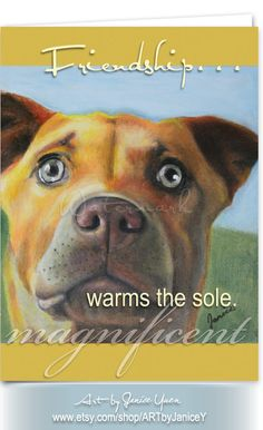 Friendship warms the sole ∙ Set of 6 dog greeting cards ∙ Friendship cards ∙ Kelpie ∙ Or pick & choose 6 cards by ARTbyJaniceY on Etsy