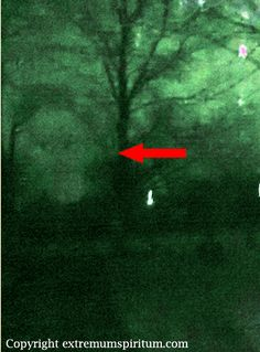 Extremum Spiritum Paranormal Of Southern Illinois Ghost Pictures, Creepy Pictures, Scary Things, Scary Stuff, Aliens, Ghost Orbs, Paranormal Pictures, Lake Monsters, Ghost Hauntings