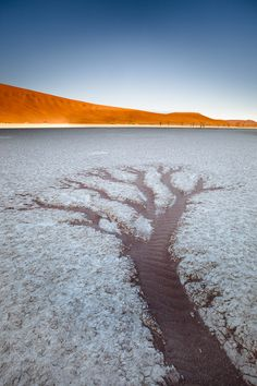 Southern Namibia. The Tsauchab river cuts into the dunes and every 10 years pushes in enough water to feed the dry pans with a little water. The constant moving dunes had cut off Deadvlei pan from this water source and it now only get water from rare local rains. I wanted to capture the feeling of lifelessness of Deadvlei, which at one point supported a number of trees. I found a water runoff pattern on the pan that resembled a tree, symbolizing an era that had passed. - Isak Pretorius