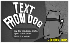Have you been reading this blog? OMGoodness gracious, too stinkin' funny! (especially if you're a dog person) #TextFromDog