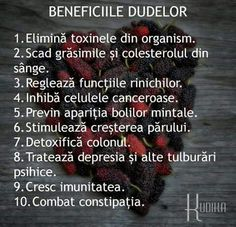 Good To Know, Diabetes, Healthy Life, Beauty Hacks, Cancer, Barcelona 2016, Tips, Magazines, Pandora