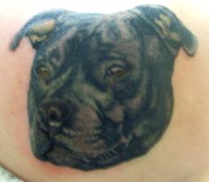 Pin Dog on Pinterest Bull Terrier Tattoo, Horse Names, Staffordshire Bull Terrier, Black Tattoos, Cute Dogs, Dogs And Puppies, French Bulldog, Tattoo Designs, Horses