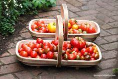 For my 2015 trialled and tested list of gifts for gardeners, I recommended a hand-made Trug Makers Trug – Trug – a large, deep versatile trug, ideal for harvesting large vegetables and fruit. I am still using my Trug this versatile trug is… Gardening Tools, Daffodils, Harvest, Pumpkin, Kit, Vegetables, Food, Pumpkins, Daffodil