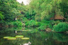 Shanghai People's Park Perfect scene