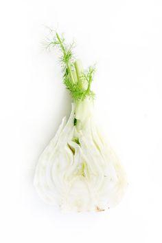 Florence fennel - finocchio