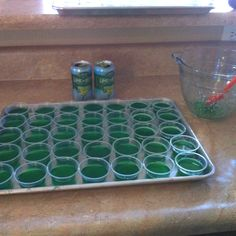 BudLight LIME-A-RITA jello shots. I made a double batch. 2C boiling water, 2 pkgs of lime jello and 2 8oz cans of BudLight LimeARita. Awesome and Yummy!!
