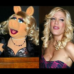 Celebrity Muppet Look-a-Likes - Gallery