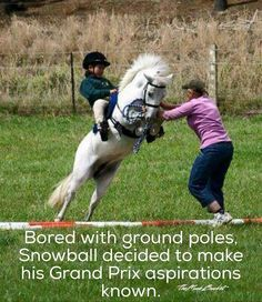 Never trust a horse named Snowball.