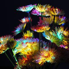 Glowing rainbow flowers   fun with glow stick fluid