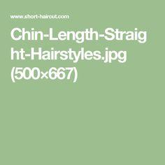 Chin-Length-Straight-Hairstyles.jpg (500×667)