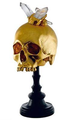 Explorers Skull by Eduardo Garza