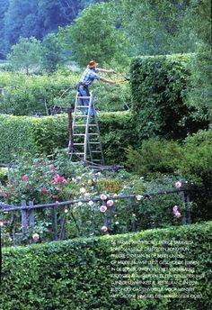 To have acres of land with an impressive, wild garden.