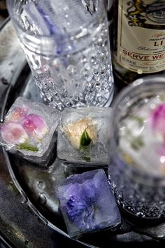 Edible Flower Ice Cubes!