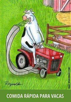 Spanish jokes for kids, chistes visuales: Fast food for cows / Comida rápida para vacas. #Jokes in Spanish