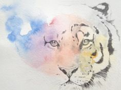 Rainbow Tiger drawing from the sketchbook