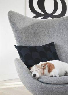 Arne Jacobsen Egg Chair in Soft Grey Diy Chair, Sofa Chair, Swivel Chair, Chair Design, Furniture Design, Fritz Hansen, Jack Russell Terrier, Wooden Diy, Danish Design