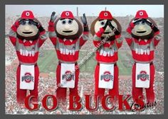 Homemade Ohio State Buckeye Brutus Mascot Costume: As a family that bleeds Scarlet & Grey, being Buckeye Brutus was what my son wanted for Halloween.  So where to begin this Ohio State Buckeye Brutus Mascot