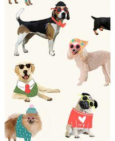 Dogs in Sunglasses Wallpaper - 273502