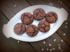 Sprouted Einkorn Chocolate Chip Muffins