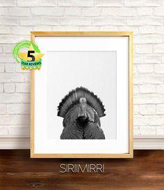 Turkey Print Wall Art Black and White Animal Photography
