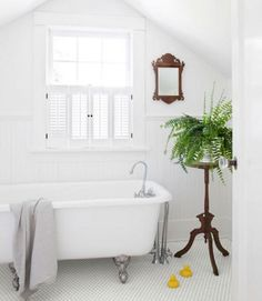 Small Bathroom With Plants