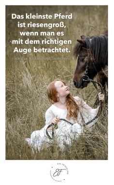 Das kleinste Pferd ist riesengroß, wenn man es mit dem richtigen Auge betrachtet. von Eva, für Katrin mit Sternchen. Quote - Zitat - of the day - horse - pony