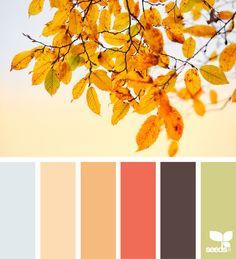 { autumn glow } | image via: @marjamatkalla ... #color #palette #colorpalette #pallet #colour #colourpalette #design #seeds #designseeds #seedscolor