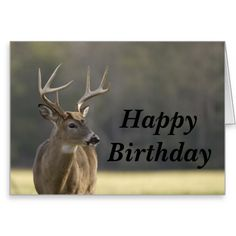 happy+birthday+with+deer+wishes+|+Smoky+Mountain+Buck+Animal+Hunting+Happy+Birthday+Greeting+Card+...