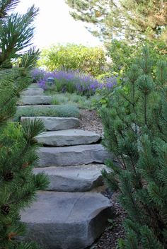 stone steps on hill - Google Search