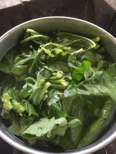 Lettuce, Spinach, Vegetables, Dyes, Food, Natural, Prints, Essen, Vegetable Recipes