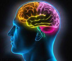 Le cerebrum, un machine faced con pieces recicle