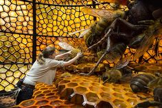 Bees in a giant honeycomb