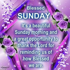 Good Morning Have A Blessed Sunday Pictures, Photos, and Images for have a blessed Sunday quotes quote days of the week good morning Have A Blessed Sunda Blessed Sunday Quotes, Have A Blessed Sunday, Blessed Night, Sunday Quotes Funny, Happy Sunday Friends, Happy Sunday Messages, Good Sunday Morning, Morning Wish, Sunday Greetings
