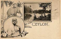 Ceylon ... unknown Lady & Landscape