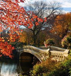 Bow Bridge, Central Park in New York, NY