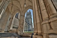 National Cathedral, He's genius, isn't he? Good work Dad (by Jerry Gavin)