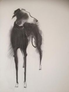 Sally Muir 'Long Dog,' charcoal on paper.