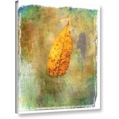 ArtWall Elena Ray  Leaf II  Gallery-Wrapped Canvas, Size: 36 x 48, Green