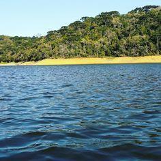 #fishingtrip #fishing #fishingday #pesca #pescaesportiva  #iscasmatadeira #matadeira #represavossoroca #vossoroca