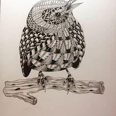 Wood Crafts, Owl, Bird, Animals, Animais, Animales, Animaux, Birds, Owls