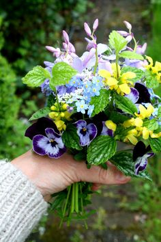 spring posy with forget-me-nots and pansies