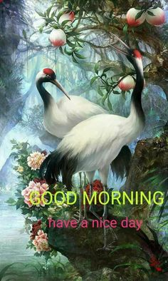 Birds new good morning images Greetings Images - Imagez Morning Coffee Images, Good Morning Friends Quotes, Good Morning Sister, Good Morning Beautiful Images, Good Morning Inspiration, Morning Greetings Quotes, Good Morning Picture, Good Morning Messages, Morning Pictures