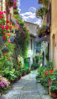 Beautiful Spello, Liguria, Italy