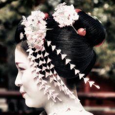 Maiko (apprentice Geisha) Katsuyakko Gion-Kobu Kyoto Japan.  祇園甲部舞妓 佳つ奴さん 京都.